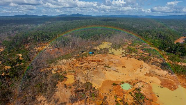 Resultado de imagen para el arco minero en venezuela y los daños al ecosistema
