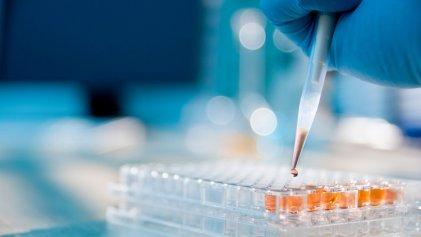 Cómo funciona el test para COVID-19: ¿puede mejorarse?