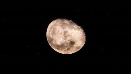 """La NASA confirmó que en la Luna hay agua """"para abastecer colonias humanas"""""""