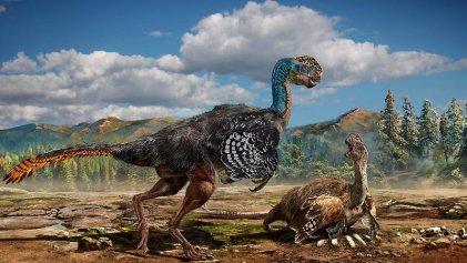 Por primera vez se halla un dinosaurio fosilizado sobre los huevos que incubaba