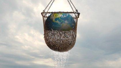 Seaspiracy, la pesca insostenible: documental sobre la urgencia de océanos sanos
