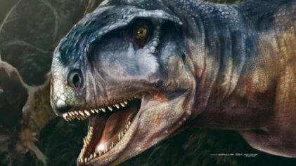 Descubren en la Patagonia restos fósiles de un depredador del Cretácico