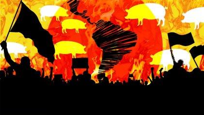 Megagranjas porcinas: el negocio de cultivar pandemias