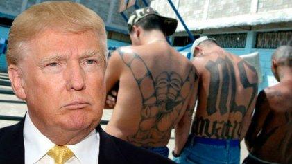 Trump insiste con el muro, esta vez con la excusa de la Mara Salvatrucha