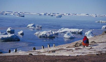 Un récord alarmante: la Antártida tuvo la temperatura más alta en casi 70 años