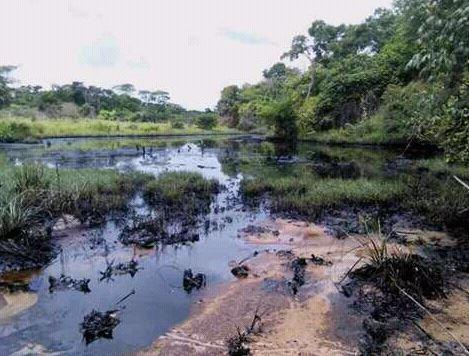 Tragedia ambiental por derrame petrolero en el estado Anzoátegui